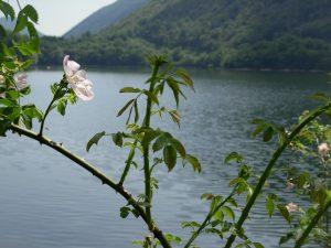 Lago di Ghirla