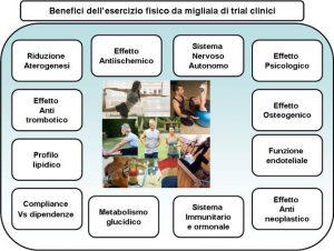 Esercizio fisico benefici