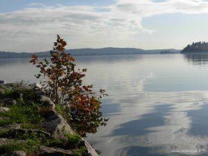 Lago Varese 1
